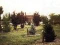 Mick-Evertson-Arboretum-1